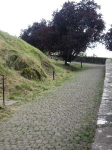 La Citadelle montée pavée 2