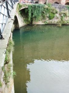 La Nive sous le Pont Ste Marie